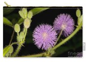 Mimosa Pudica  Carry-all Pouch