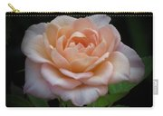 Mini Rose Carry-all Pouch