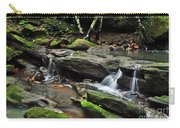 Mini Waterfalls Carry-all Pouch by Kaye Menner