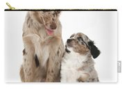 Miniature American Shepherd With Puppy Carry-all Pouch