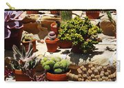 Mission Cactus Garden Carry-all Pouch