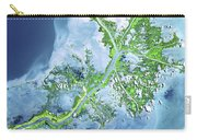 Mississippi River Delta Carry-all Pouch