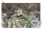 Misty Moss Carry-all Pouch