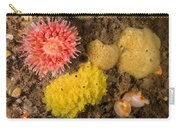 Mixed Atlantic Invertebrates Carry-all Pouch