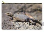 Mojave Desert Chuckwalla Carry-all Pouch