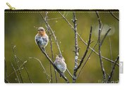 Momma Bluebird And Baby Carry-all Pouch