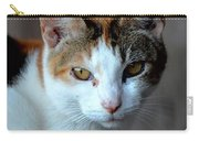 Momma Cat Carry-all Pouch