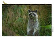 Momma Coon Carry-all Pouch