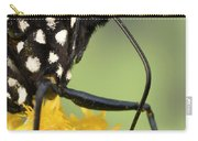 Monarch Butterfly Male Feeding Carry-all Pouch