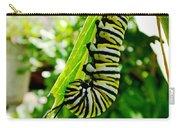Monarch Caterpillar 5 Carry-all Pouch