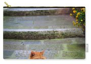 Montepulciano Cat Carry-all Pouch