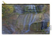 Montour Falls Fall Panorama Carry-all Pouch