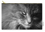 Moody Cat Carry-all Pouch