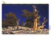 Moon And Bristlecone Pines Carry-all Pouch