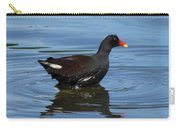 Moor Hen 2 Carry-all Pouch