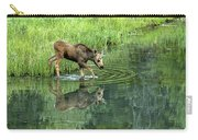 Moose Calf Testing The Water Carry-all Pouch