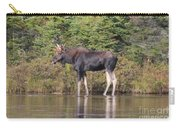 Moose_0596 Carry-all Pouch