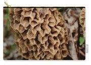 Morel-ly Awesome Carry-all Pouch