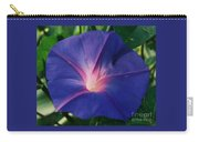 Morning Glory In Bermuda # 1 Carry-all Pouch