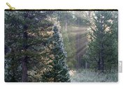 Morning Rays Carry-all Pouch