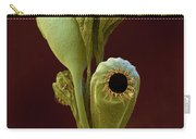 Moss Spore Capsules Carry-all Pouch