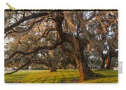 Mossy Trees At Sunset Carry-all Pouch