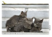 Cat And Kittens Carry-all Pouch