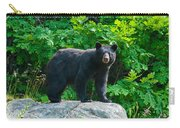Mother Bear Carry-all Pouch