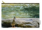 Mother Duck Carry-all Pouch
