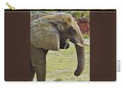 Mother Elephant Carry-all Pouch