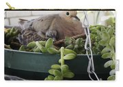 Mother With Baby Mourning Dove Carry-all Pouch