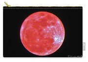 Motherly Moon Carry-all Pouch