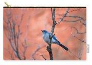Mountain Blue Bird Carry-all Pouch