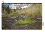 Mountain Co Maroon Bells 20 Carry-all Pouch
