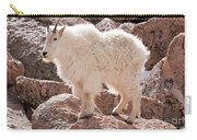 Mountain Goat On Mount Evans Carry-all Pouch