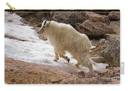 Mountain Goat On Snowfield On Mount Evans Carry-all Pouch