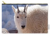 Mountain Goat Portrait On Mount Evans Carry-all Pouch