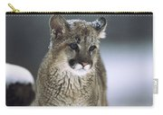 Mountain Lion Cub In Snow Montana Carry-all Pouch