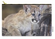 Mountain Lion Cub On Tree Branch Carry-all Pouch