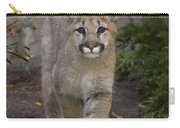 Mountain Lion Cub Walking Carry-all Pouch