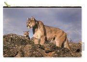 Mountain Lions Felis Concolor Carry-all Pouch