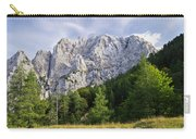 Mountain Scene Carry-all Pouch