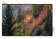 Mountain Side Colors Carry-all Pouch