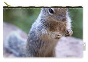 Mountain Squirrel 2 Carry-all Pouch