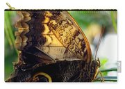 Mournful Owl Butterfly In Sunlight Carry-all Pouch