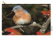 Mr Bluebird Carry-all Pouch