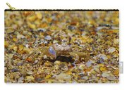Mr. Crabby Carry-all Pouch