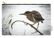 Mr. Green Heron Carry-all Pouch