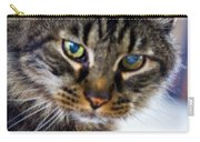 Mr. Lynx - Tabby - Cat Carry-all Pouch