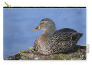 Mrs. Mallard Carry-all Pouch